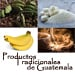 http://www.deguate.com/artman/uploads/32/productos-tradicionales-1.jpg
