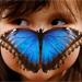 http://www.deguate.com/artman/uploads/33/b_21.jpg