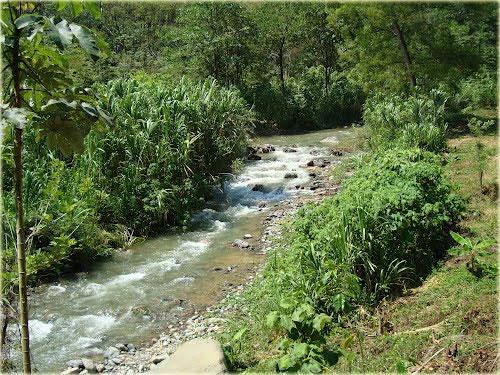 Rio Polochic - Guatemala