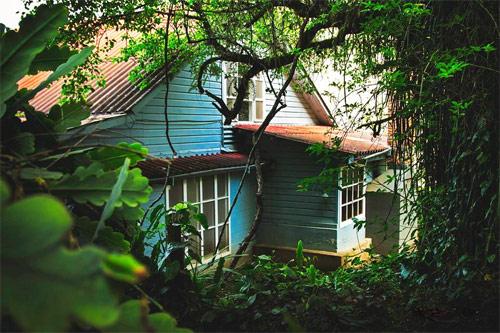 Casa Xara entre vegetación, Chimaltenango, Guatemala.