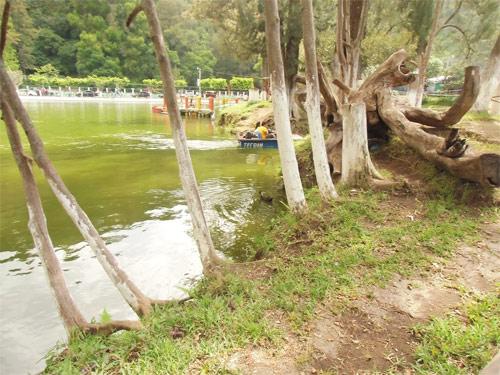Laguna de los cisnes, Chimaltenango