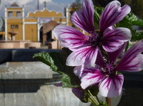 Fuente e Iglesia en Plaza central de Parramos, Chimaltenango