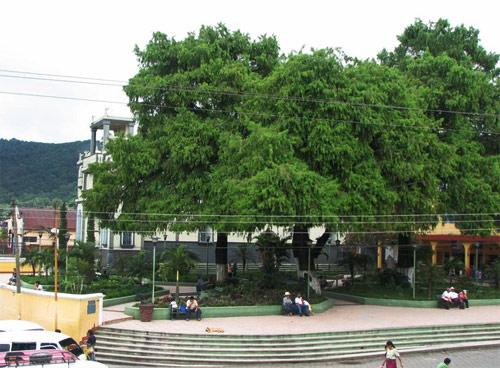 Parque central de Yepocapa, Chimaltenango