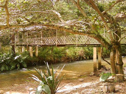 https://www.deguate.com/artman/uploads/39/rio-escondido-puente.jpg