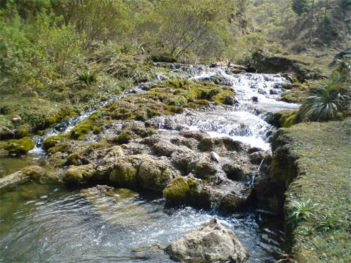 Corriente en riachuelo de Laguna Magdalena, Chiantla, Huehuetenango