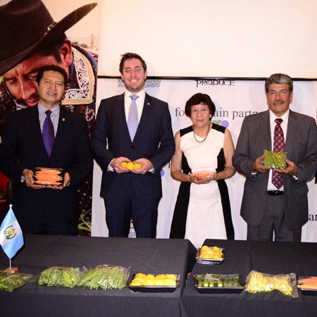 Programa Royas Vegetales Mayas