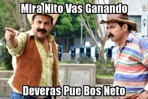 Meme Nito Neto