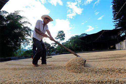 https://www.deguate.com/artman/uploads/47/Guatemala-500px_5.jpg