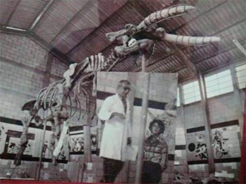 El Museo de Paleontología de Estanzuela en Guatemala ocupa el sexto lugar de América.
