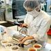 bachillerato en Industria de Alimentos