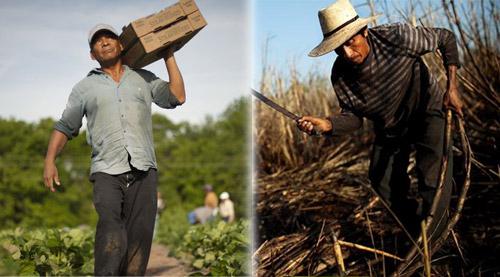 Trabajo rural en Guatemala