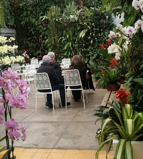 Restaurante Cafe Mimi entre flores