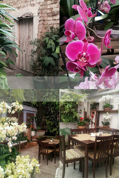 Cafe Mimi Guatemala