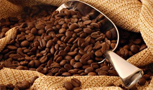 Surgimiento del cultivo del café en Guatemala