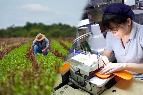 Los motores de la creación de empleo en Guatemala