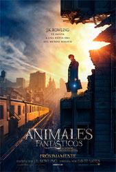 Animales_1.jpg
