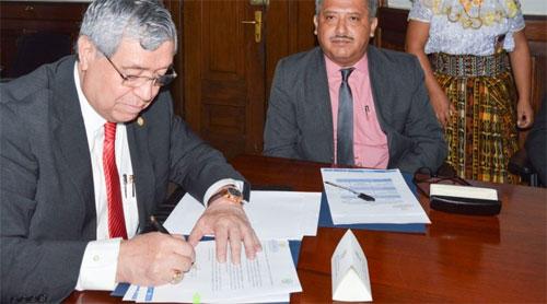 Gobierno reafirma compromiso en el combate de tala ilegal