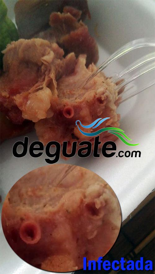 http://www.deguate.com/artman/uploads/55/e-2_24.jpg