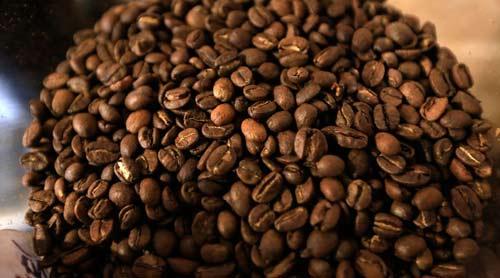 EE. UU. adquiere el 39% del café guatemalteco
