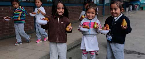 Alimentación escolar, refuerzo en la formación de los alumnos