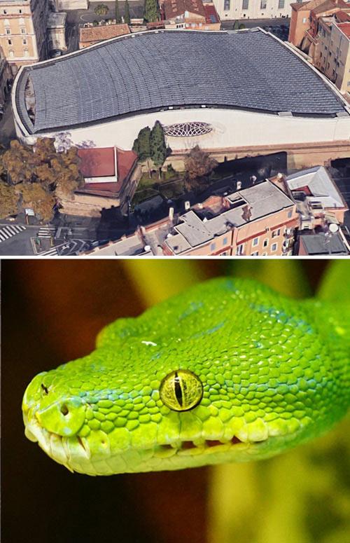 Salon de la serpiente - Exterior