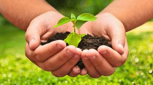 Urgen acelerar la economía sostenible