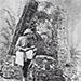 Historia de las Ruinas de Quiriguá en Guatemala