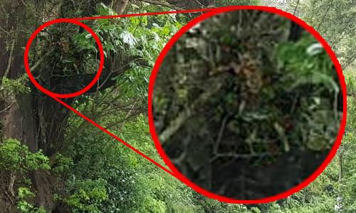 Zoom fotografía Cuatachicas Guatemala