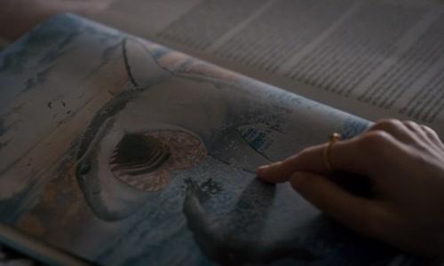 El demogorgon huele la sangre igual que los tiburones - Stranger Things