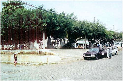 Municipio Nuevo San Carlos