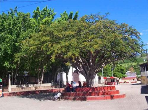 Municipio de Huité